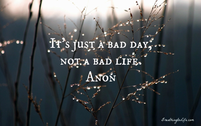 it's just a bad day not a bad life quote